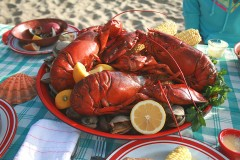 a clambake, with lobster and corn, on a beach